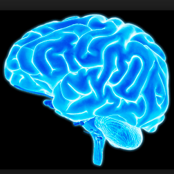 Exercise Benefits Your Brain blog