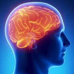 brain drain blog